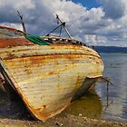 Nature reclaiming boat by Trevor Harley