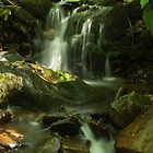 Ffrwd Brook-2 by Roly01