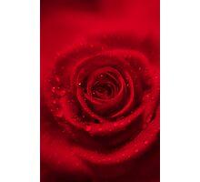Rosso  Photographic Print