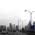 A VIEW FROM THE DVP by Jeanette Muhr