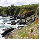 Prussia Cove by Robert Down