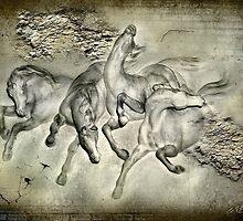 Horses by Svetlana Sewell