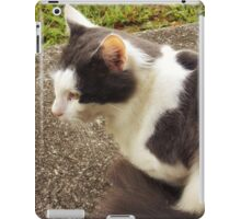 Mama Cat iPad Case/Skin