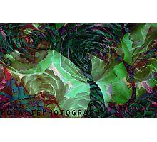 underwater rose Photographic Print