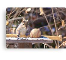 Squirrel baseball and bat Canvas Print