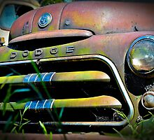 Old Dodge by Tracie Louise