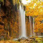 Waterfall in Plitvice by Béla Török