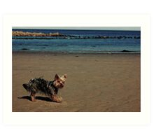 Beach Puppy!! Art Print