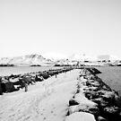 Land of Ice and snow by Ólafur Már Sigurðsson