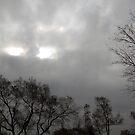 Eyes in the Sky by tom j deters