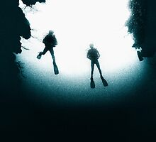 Divers on the North Wall - Grand Cayman by Andrew Bret Wallis