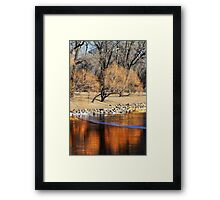 Willow Reflection Framed Print