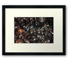 HAPPY NEW YEAR EVERYONE Framed Print