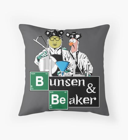 Bunsen & Beaker Throw Pillow