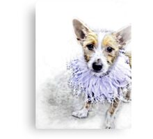 Wire Haired Jack Russell Terrier Canvas Print