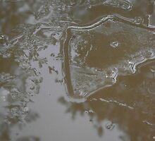 First Ice by SophiaDeLuna