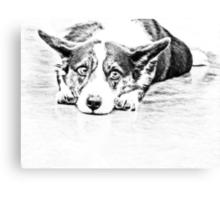 Welsh corgi Canvas Print