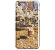 Shelby at Ship Rock iPhone Case/Skin