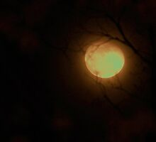 winter full moon by ANNABEL   S. ALENTON