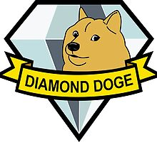 Diamond Doge by Chris McLeary