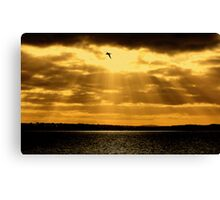 Sun Shining Through Canvas Print