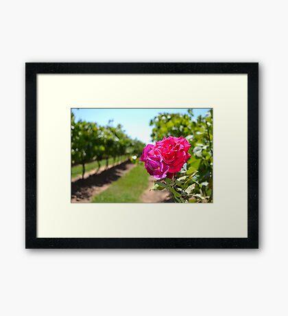 It's a flower Framed Print