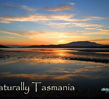 Naturally Tasmania 2012 | clickedbynic photography by clickedbynic