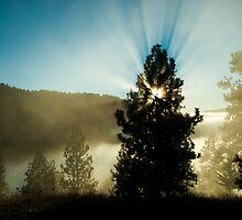 Sun Over Cloud Lake by tsarts
