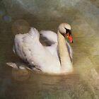 Mystic Lake by Carol Bleasdale