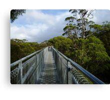 Tree Top Bridge Canvas Print