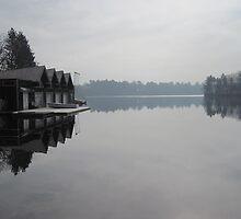 Reflections on lake Waban # 2 by Nupur Nag