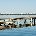 Jetty by tarsia
