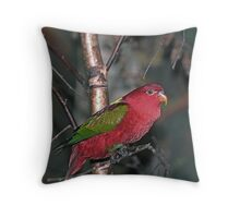 Chattering Lory Bird. Throw Pillow