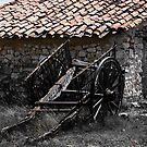 the last load, abandoned hay cart, Maestrazgo, Spain by Andrew Jones