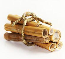 Bamboo by RosiLorz