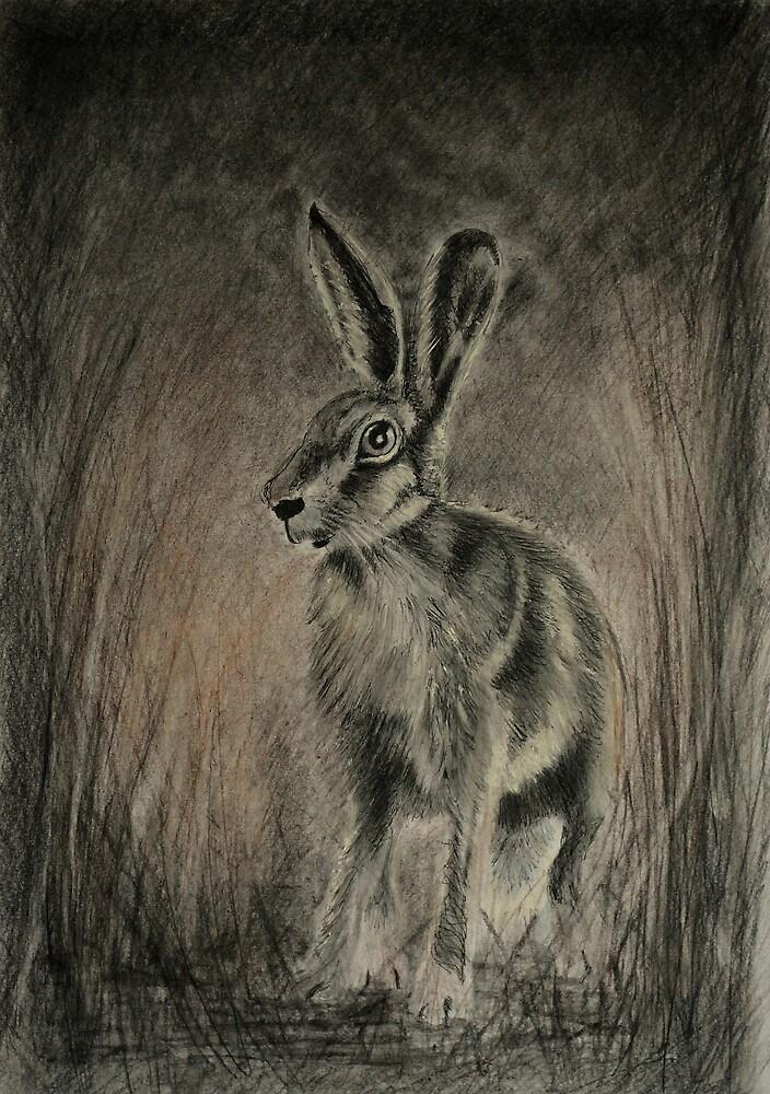 Midnight  Hare by Lynn Hughes