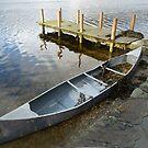 Abandoned Canoe by Lynn Bolt