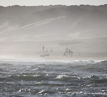 Bushmans beach cricket by Warren Bolttler
