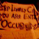 Occupy Maine by nadinecreates