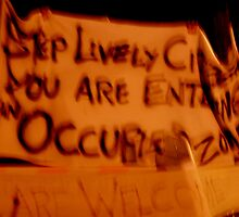 Occupy Maine by nadinecreates