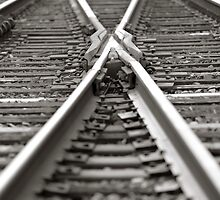 Cross Tracks by Scott Mohrman