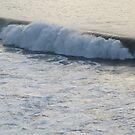 Wave I - Ola I Playa Olas Altas by PtoVallartaMex