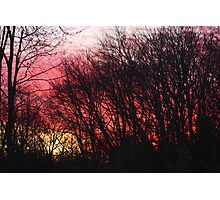 Burning Sun, Brilliant Sky Photographic Print