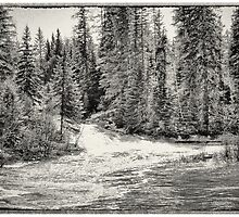 aide creek by mlariviere
