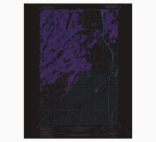USGS Topo Map Washington State WA Spangle West 243889 1980 24000 Inverted One Piece - Short Sleeve