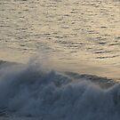 Wave III - Ola III, Playa Olas Altas by PtoVallartaMex
