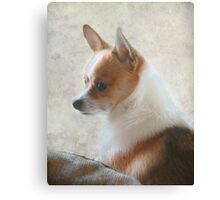 Sweet And Innocent Canvas Print
