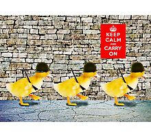Army of Cute Ducklings Photographic Print