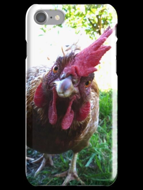 Curious chicken by Anne van Alkemade
