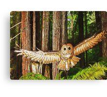 Magic of Flight - The Flying Owl Canvas Print